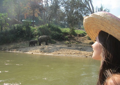 Chiang Mai: The Quiet, Charming Soul of Thailand